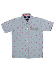 Short-Sleeve - Flamingo All-Over Print Woven (4-7)