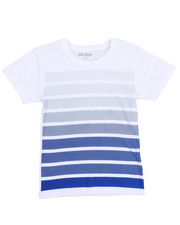 Boys - Crew Neck Stripe Tee (8-20)-2211800