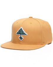 LRG - Grow Trees Snapback Hat-2245526