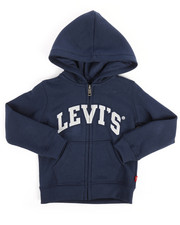 Boys - The Icon Hoodie (2T-4T)-2256288