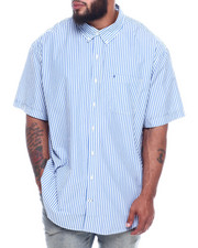 Izod - S/S Button Down Stripes (B&T)-2325003