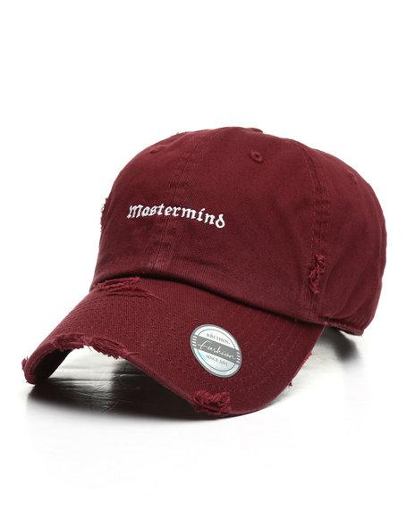 Buyers Picks - Vintage Mastermind Dad Hat