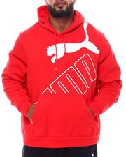 Hoodies - Big Logo Hoody (B&T)-2539842