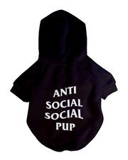 Pet Shop - ASPC Hoodie-2654593