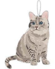 Pet Shop - Nala The Cat Air Freshener-2654137