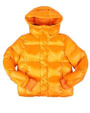 Jordan Craig - Shiny Hooded Puffer Jacket (8-16)-2704823