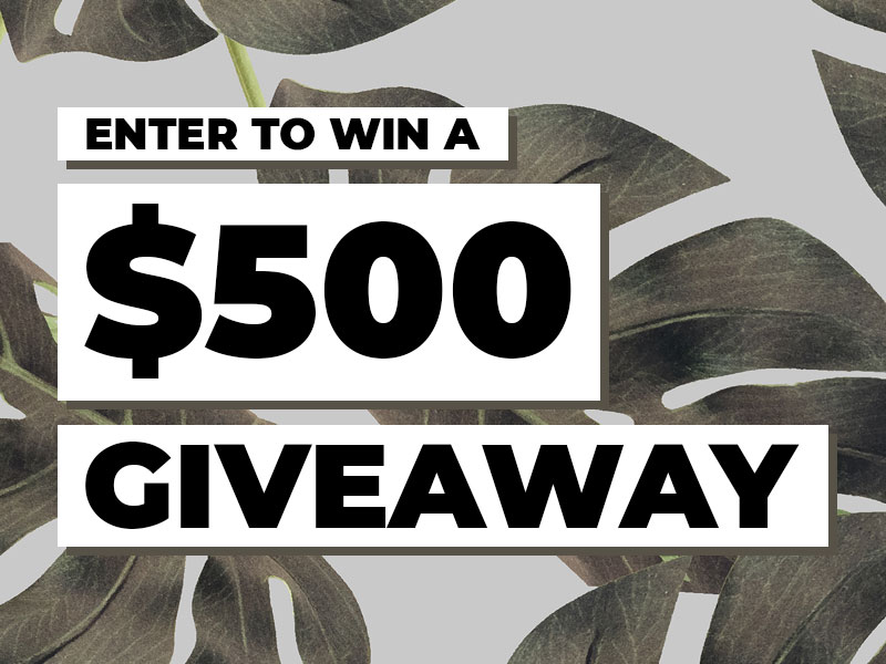 Enter below for a chance to win a $500 Giveaway at DrJays.com